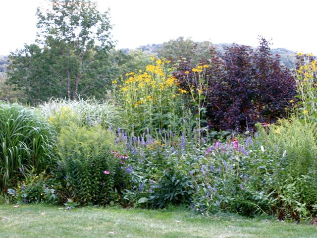 perennial-border in summer ⓒ Michaela at TGE