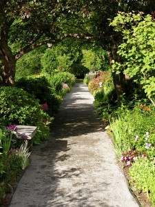 view-down-path-bridge-of-flowers