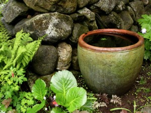 water-bowl-secret-garden