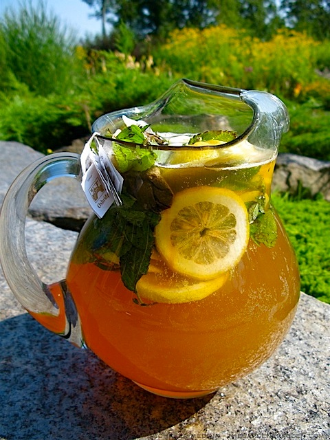 Sun Tea Brewing on My Terrace