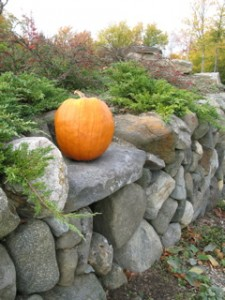 wall:pumpkin