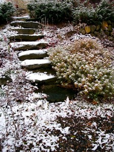 Stone steps dusted in snow