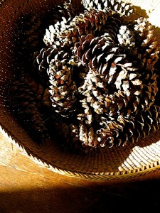 pinecones in a basket