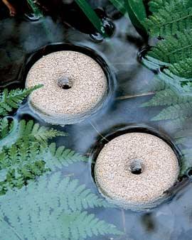 Inspiration The Japanese Tea Garden Water Bowls