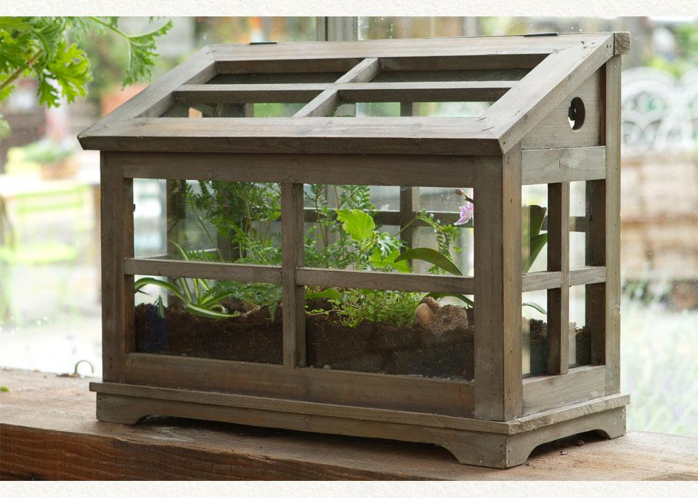 Elegant Nest Terrariums
