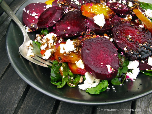 Colorful Salad of Red and Gold Beets Arugula and Feta (Click here for ...
