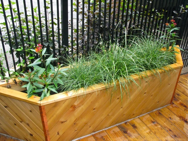 The Double Alley Side Planter ...