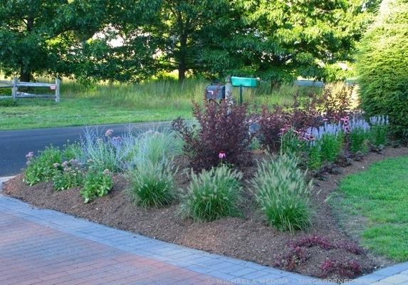 Front yard garden design the gardener 39 s eden for Wild grass landscaping