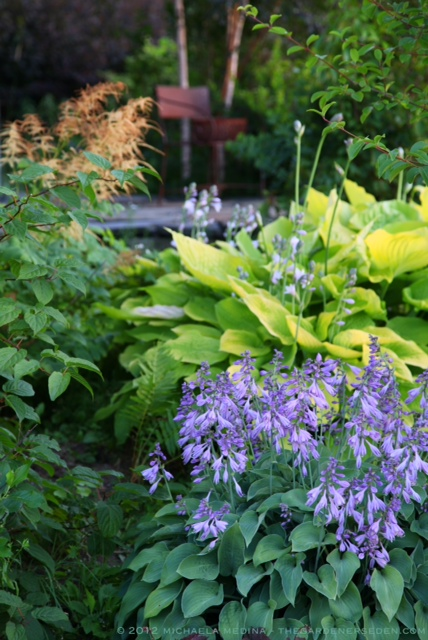 Shade Garden Design best 25 shade landscaping ideas on pinterest Hosta Leaves In Soothing Shades