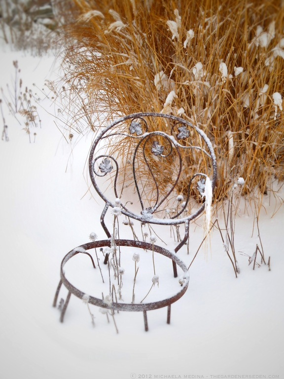 Snow-Bound Garden Chair ⓒ 2012 michaela medina - thegardenerseden.com