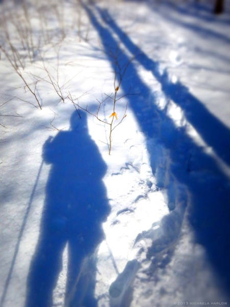 Snowshoeing and Shadows in Winter ⓒ 2013 Michaela Medina  thegardenerseden.com