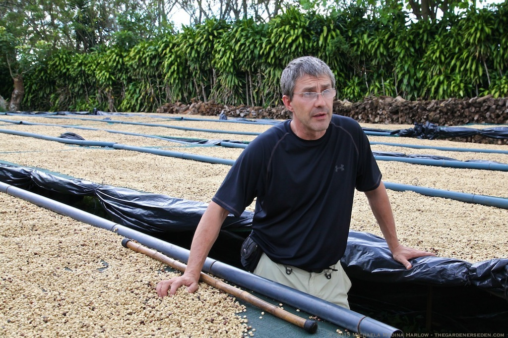 Leo Vergnani walks us through the coffee bean drying process at Finca Rosa Blanca ⓒ 2013 Michaela Medina Harlow - thegardenerseden