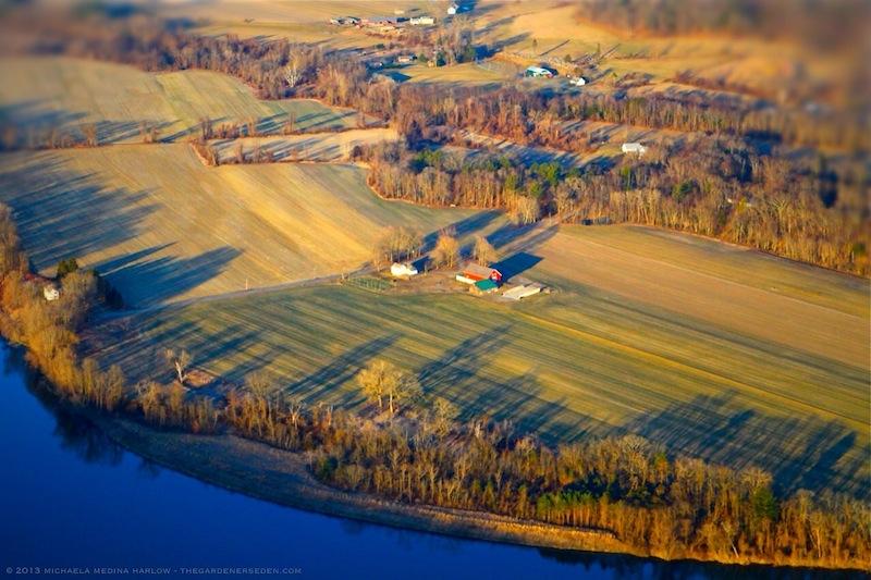 Riverside_Farm-Michaela_Medina_Harlow-thegardenerseden.com