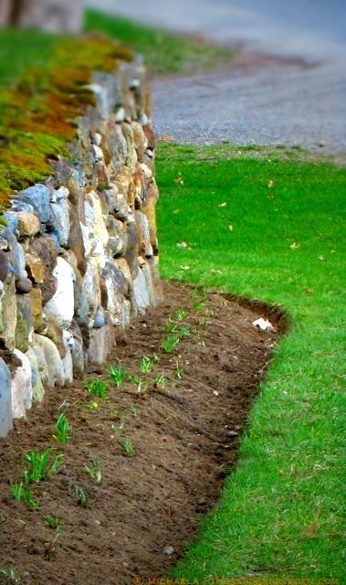 new-gardener's-first-time-edge_effort-michaela_medina_harlow-thegardenerseden