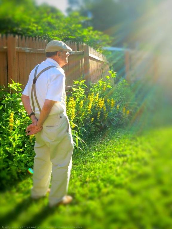 Father's_Day_2013_in_the_Garden_michaela_medina_harlow_thegardenerseden.com