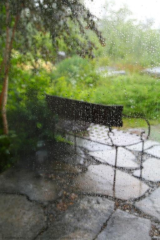 Rainy_Garden_in_June_michaela_medina_harlow_thegardenerseden.com