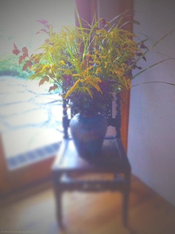 Physocarpus opulifolius 'Diablo', Miscanthus and Solidago - michaela medina harlow - thegardenerseden.com