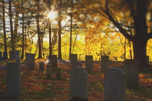 Backlit Tombstones - Riverside Cemetery, Sunderland, MA, October 2013 - michaela medina harlow