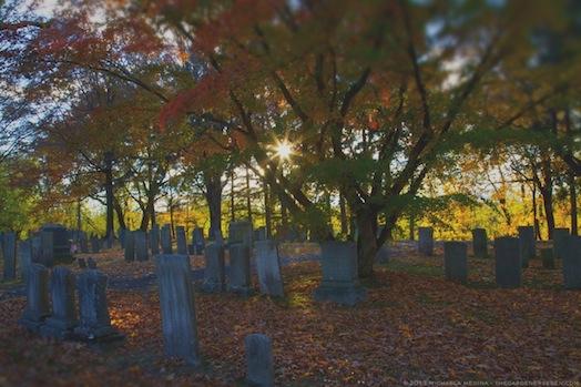 Beneath Autumn's Canopy - Riverside Cemetery - Sunderland, MA 2013 - michaela medina harlow - thegardenerseden.com