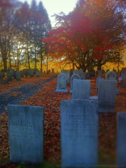 Riverside Cemetery  - michaela medina harlow - thegardenerseden.com