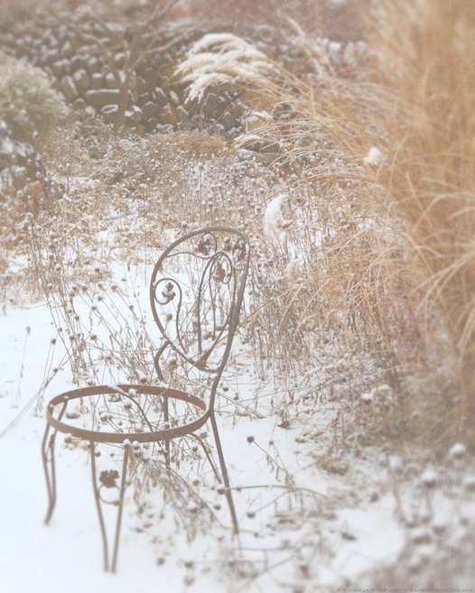 empty garden chair - copyright michaela medina harlow - thegardenerseden.com