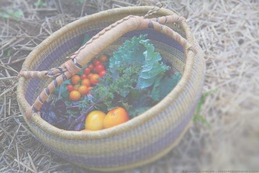 veggie basket, michaela at thegardenerseden.com