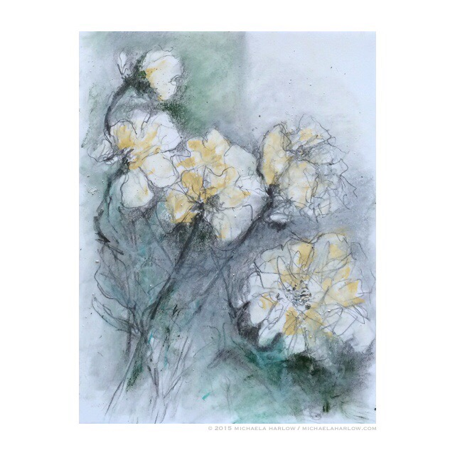 Botanical Drawings V, White Peonies, copyright Michaela Harlow 2015