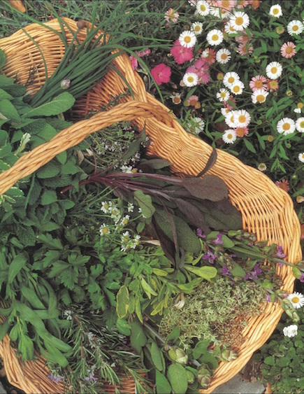 Rosalind Creasyu0027s Books On The Subject Of Edible Gardening Are Great  Inspiration. And, Who Wouldnu0027t Want To Conjure Up A Bit Of Summertime  Color, ...