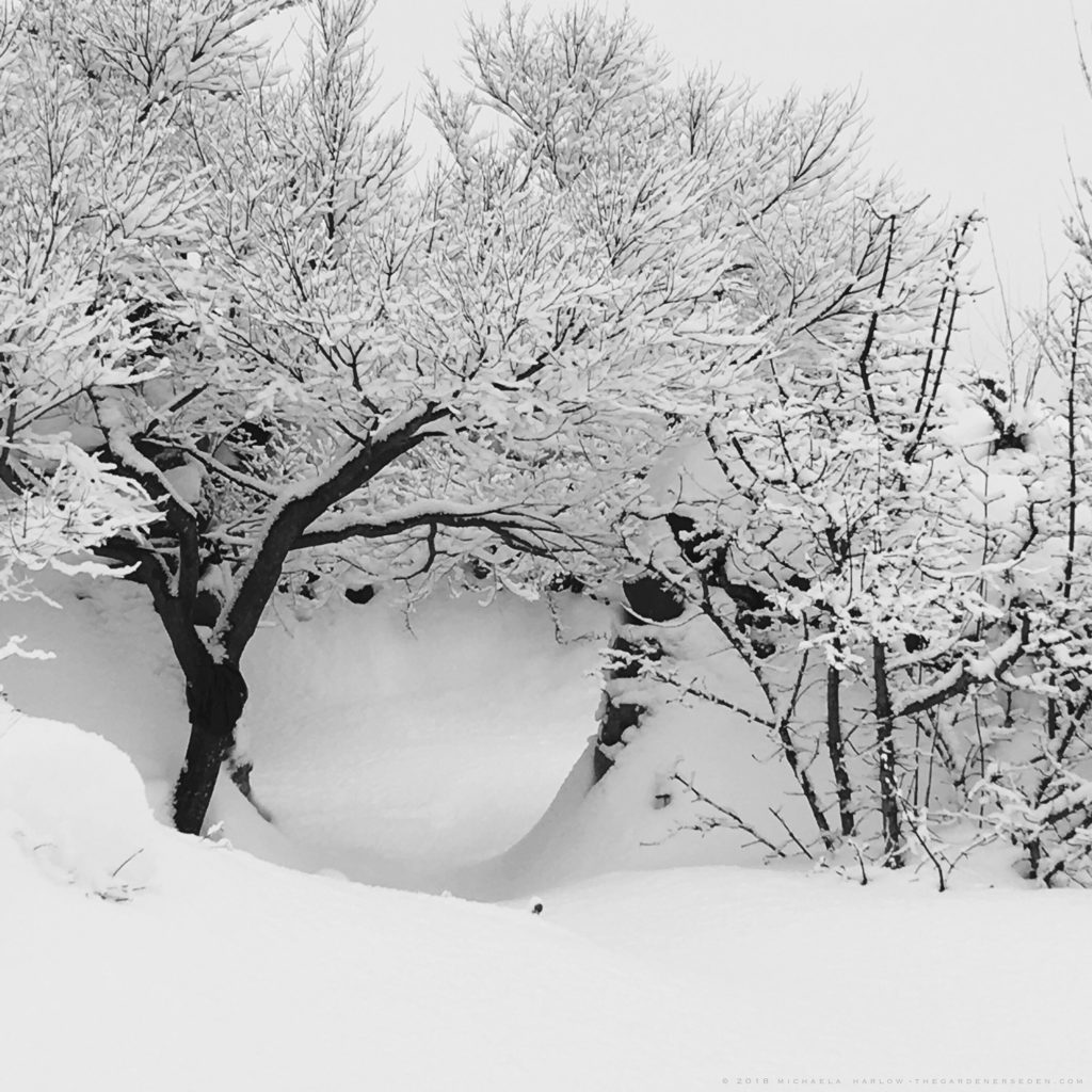 it sifts from leaden seives It sifts from leaden sieves this poem is about snow and how it falls and it represents a more positive outlook on like the meaning of the poem shows the combining of metaphors and imagery to create a winter scene of great beauty.