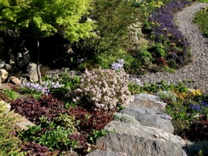 spring-looking-down-the-stone-steps