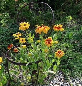 chair with rudbeckia ⓒ Michaela at TGE