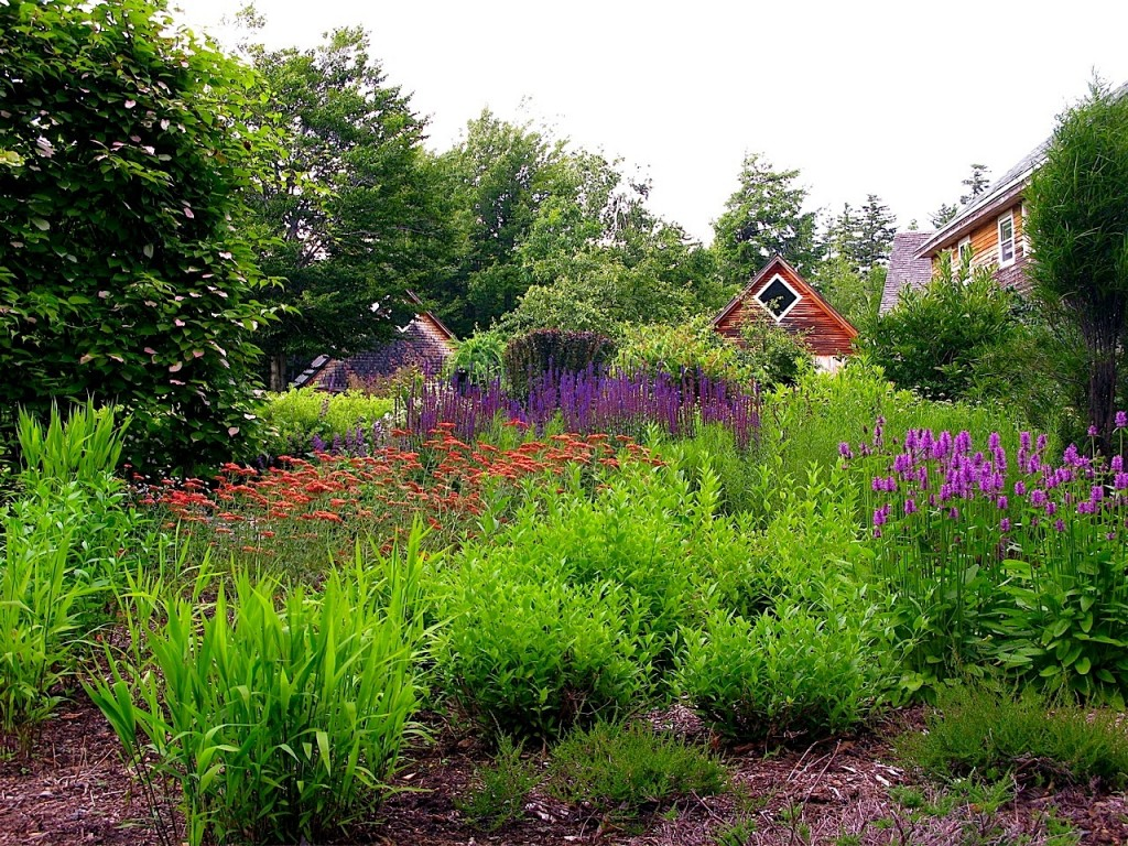 phyllis garden 3
