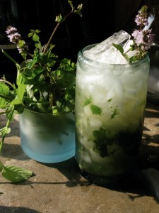 Peppermint and Cuban Mint Julep