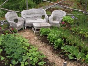 garden june