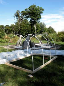 hoop house stage 1