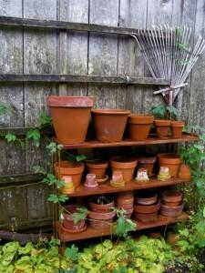 Holzapfel garden