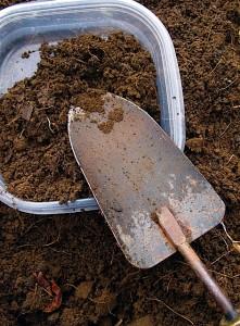 Soil Sample for Testing