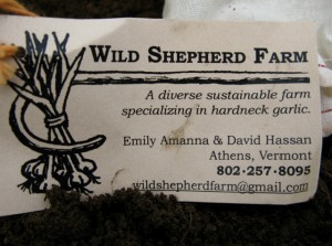 Wild Shepherd Farm Card