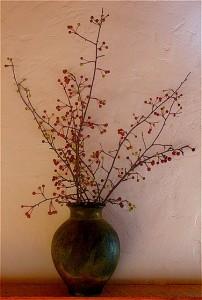 NB crabapple vase