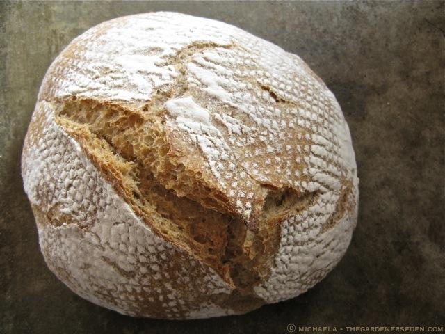 Whole-Wheat-Bread-ⓒ-michaela-thegardenerseden1