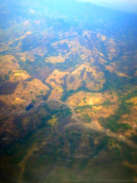 Above Costa Rica Vl ⓒ 2013 michaela medina harlow - thegardenerseden.com