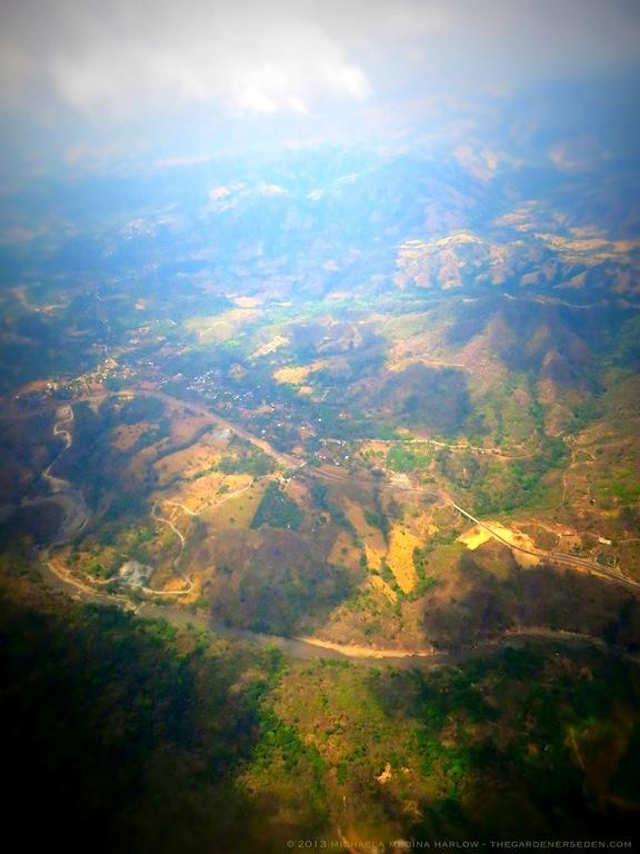 Above Costa Rica lV ⓒ 2013 michaela medina harlow - thegardenerseden.com