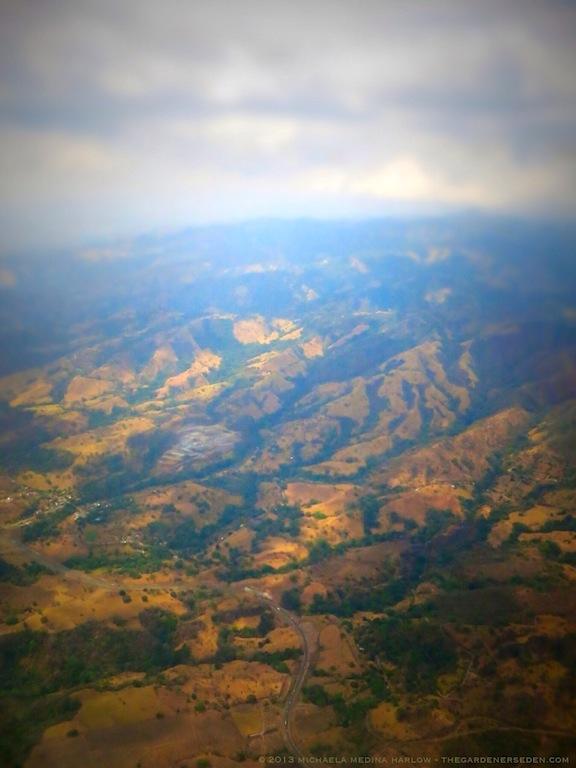 Above Costa Rica ll ⓒ 2013 michaela medina harlow - thegardenerseden.com