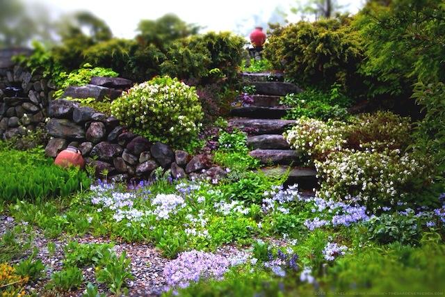 Secret_Garden_Steps_May_2013_Michaela_Medina_Harlow_thegardenerseden.com