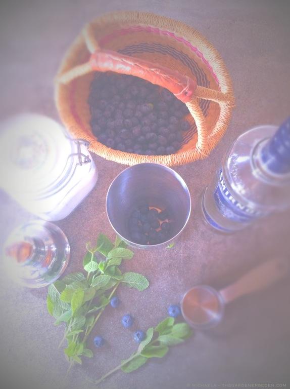 Blueberry Smash Ingredients - michaela medina harlow - thegardenerseden.com