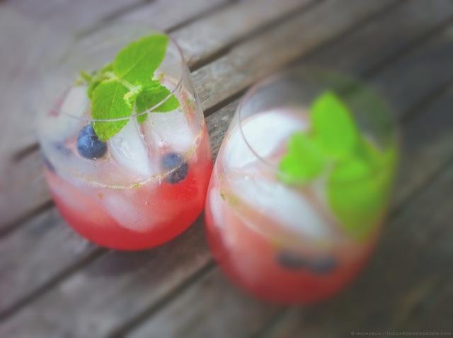 Blueberry Smashes on the Terrace - michaela medina harlow - thegardenerseden.com