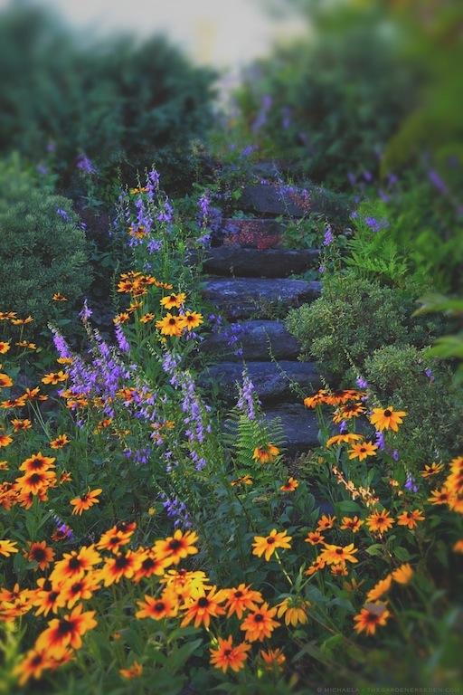 Secret Garden Stairs - michaela medina harlow - thegardenerseden.com