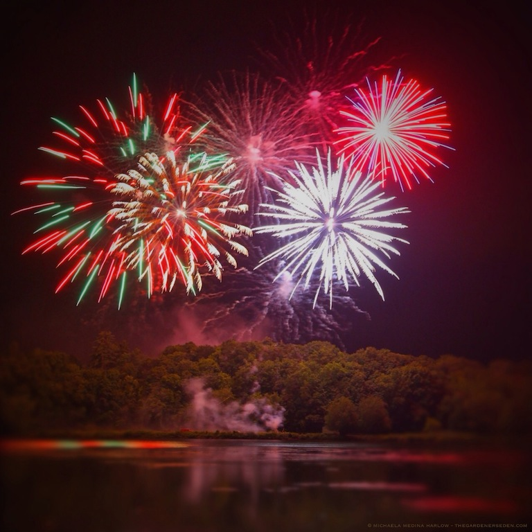 fireworks on the ct river - michaela medina harlow - thegardenerseden.com