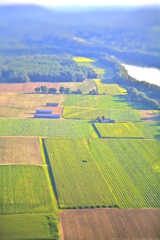 Aerial View Above the Connecticut River Valley -  Farmland - Pioneer Valley - Massachusetts - michaela medina harlow - thegardenerseden.com