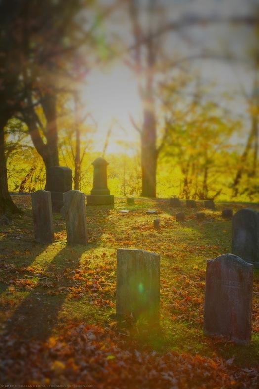 Sunlight, Riverside Cemetery, October, 2013 - michaela medina harlow - thegardenerseden.com